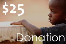 product-donation-25dollar